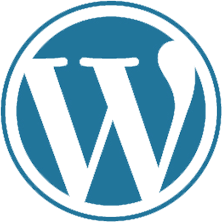 wordpress development company in chennai